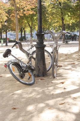 biking-in-paris