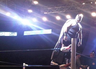 mexican-wrestler