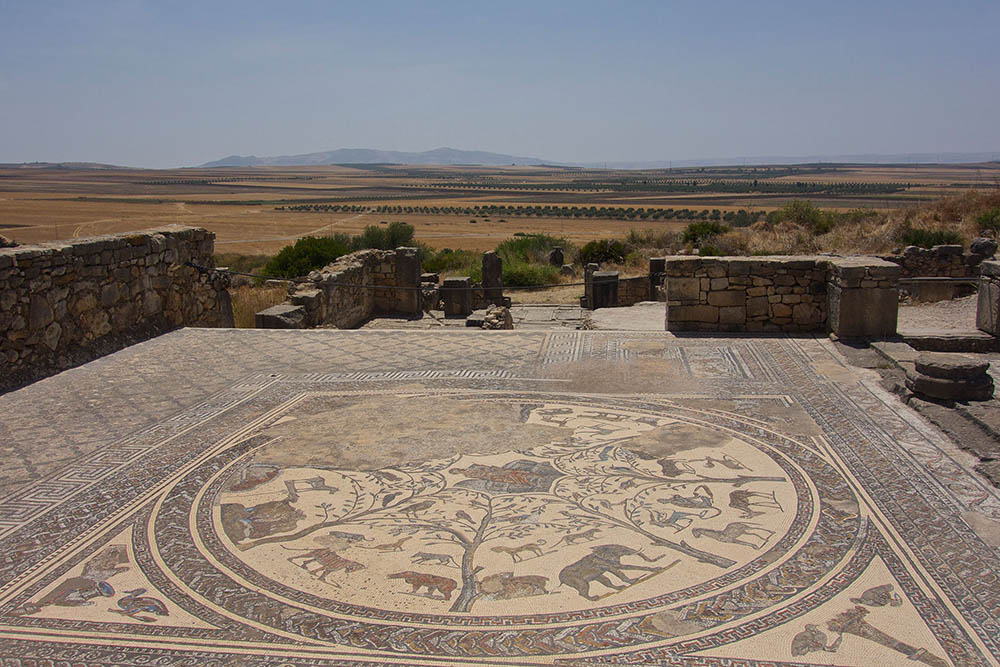 Volubilis-mosaic-and-landscape