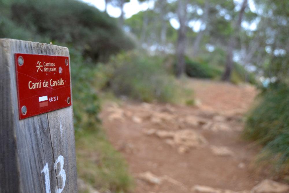 The restored Cami de Cavalls coastal path