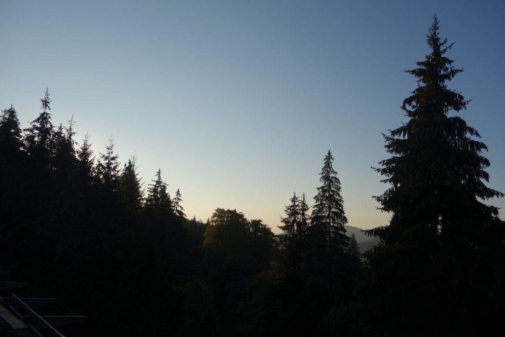 forest balvanyos resort