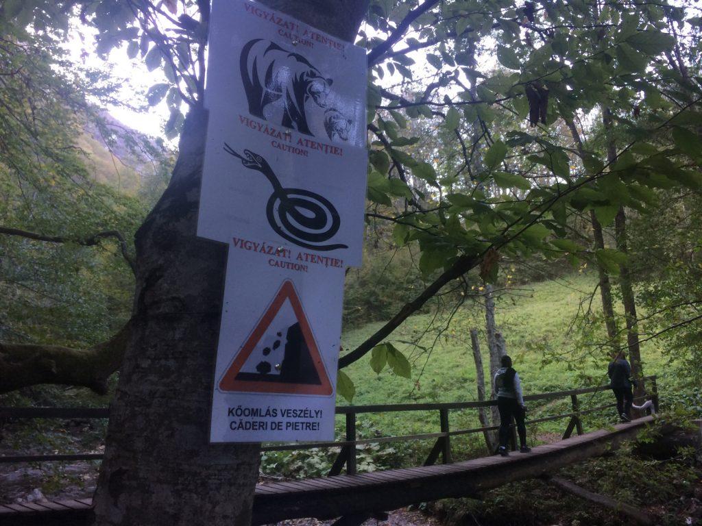 Varghis Gorge bear warning sign