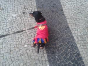 Doggy style on Copacabana beach