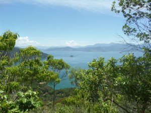 #Nofilter... Ilha Grande is a lunch tropical paradise