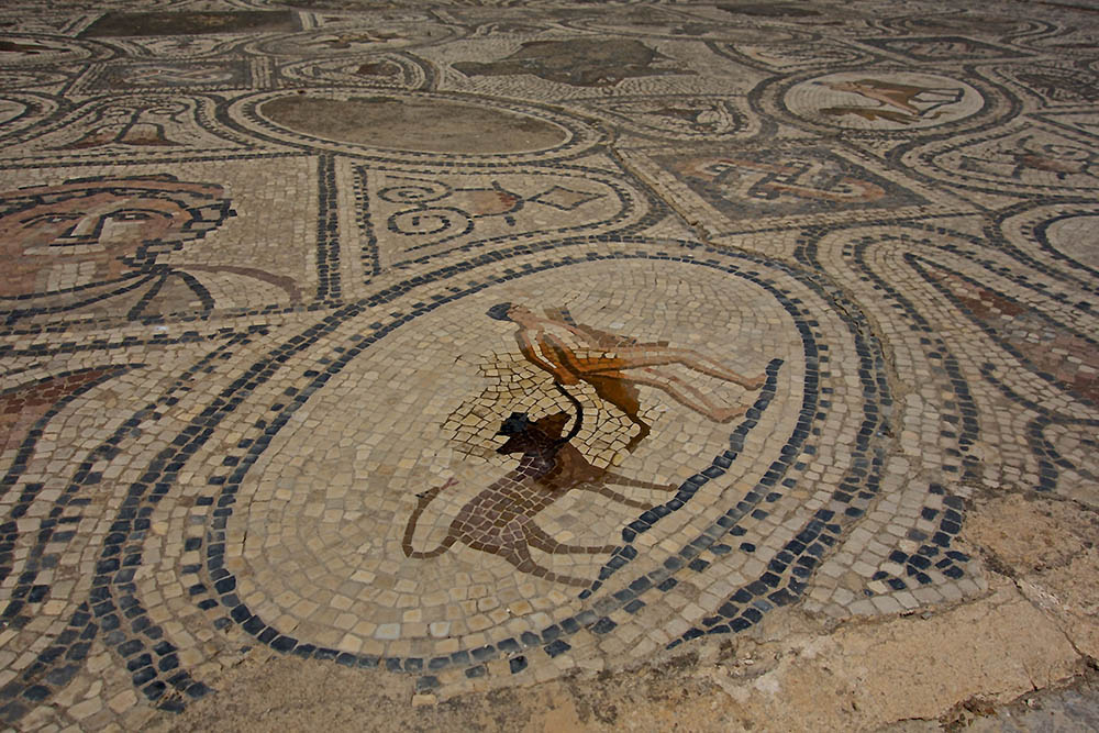 Volubilis-mosaic-water
