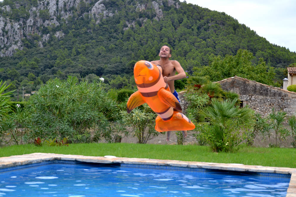 Flying Nemo
