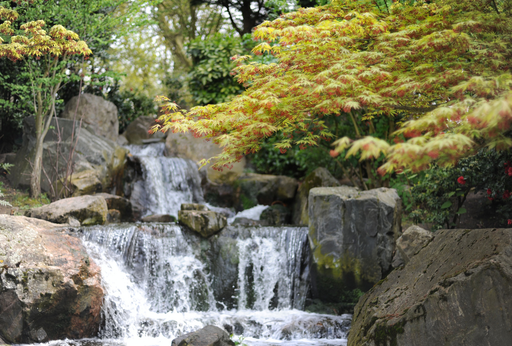 Where in London will you find this oriental park?