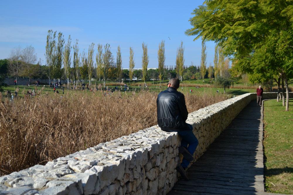 jardines-del-turia-valencia