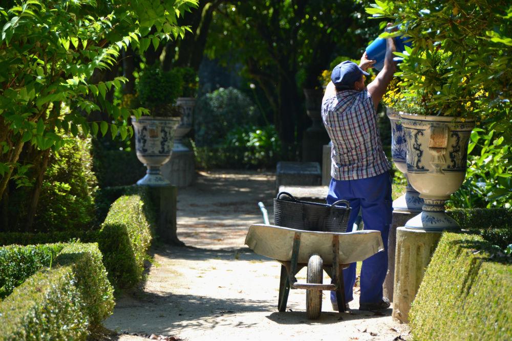 On gardening duty