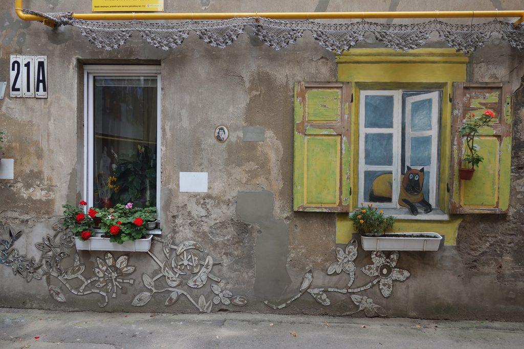 Courtyard gallery Kaunas cat street art