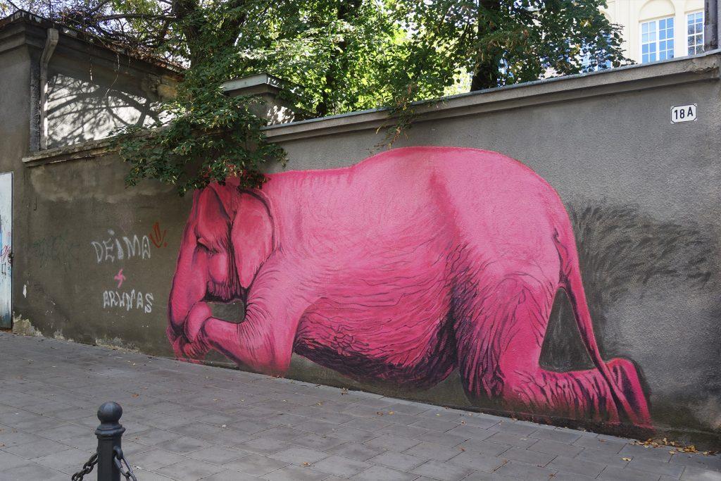 Pink elephant street art Kaunas