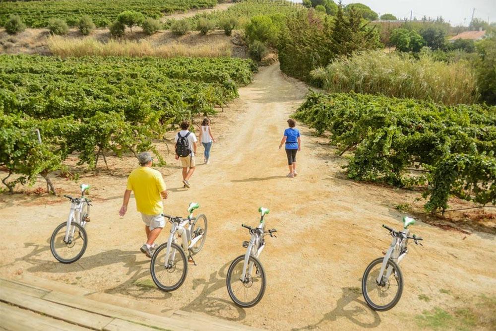 barcelona-ebike-wine-tour